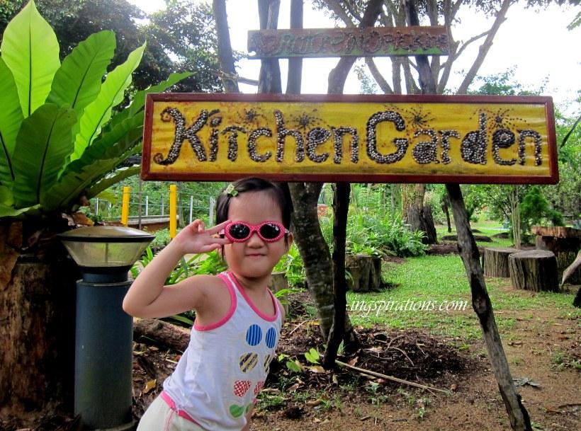 Kitchen garden pasir ris park