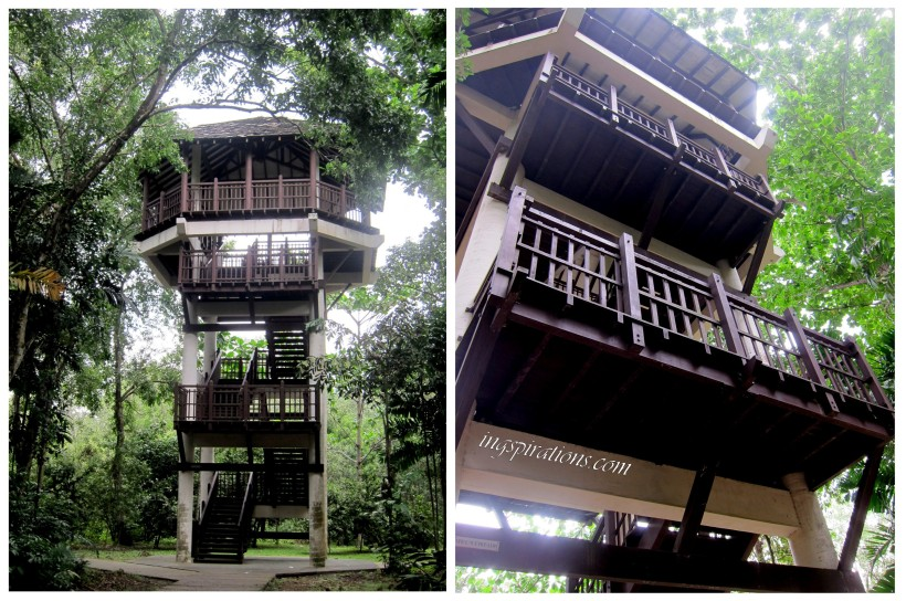 pasir ris park bird tower