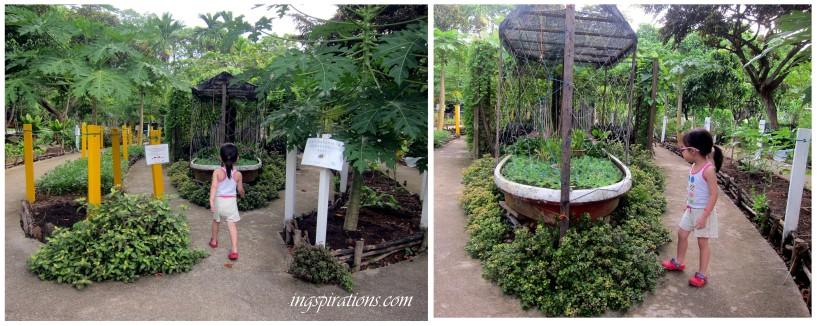 pasir ris park kitchen garden