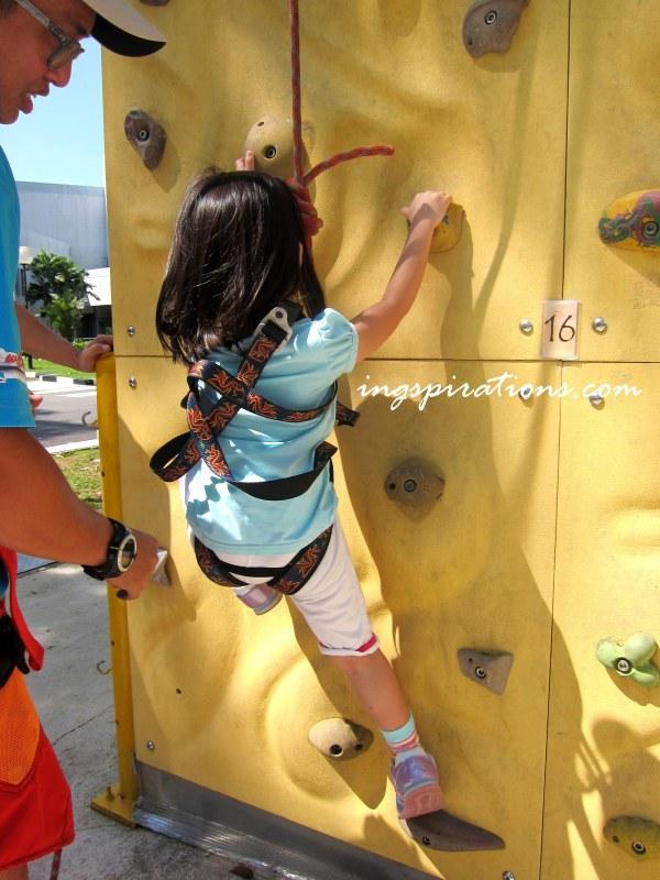 rock-climbing-the-cliff