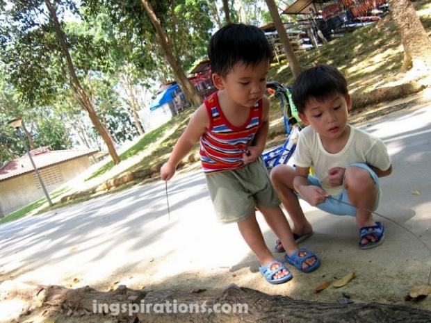 childhood-exploring-nature